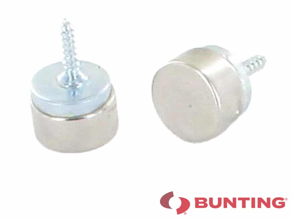 Magnetic screws