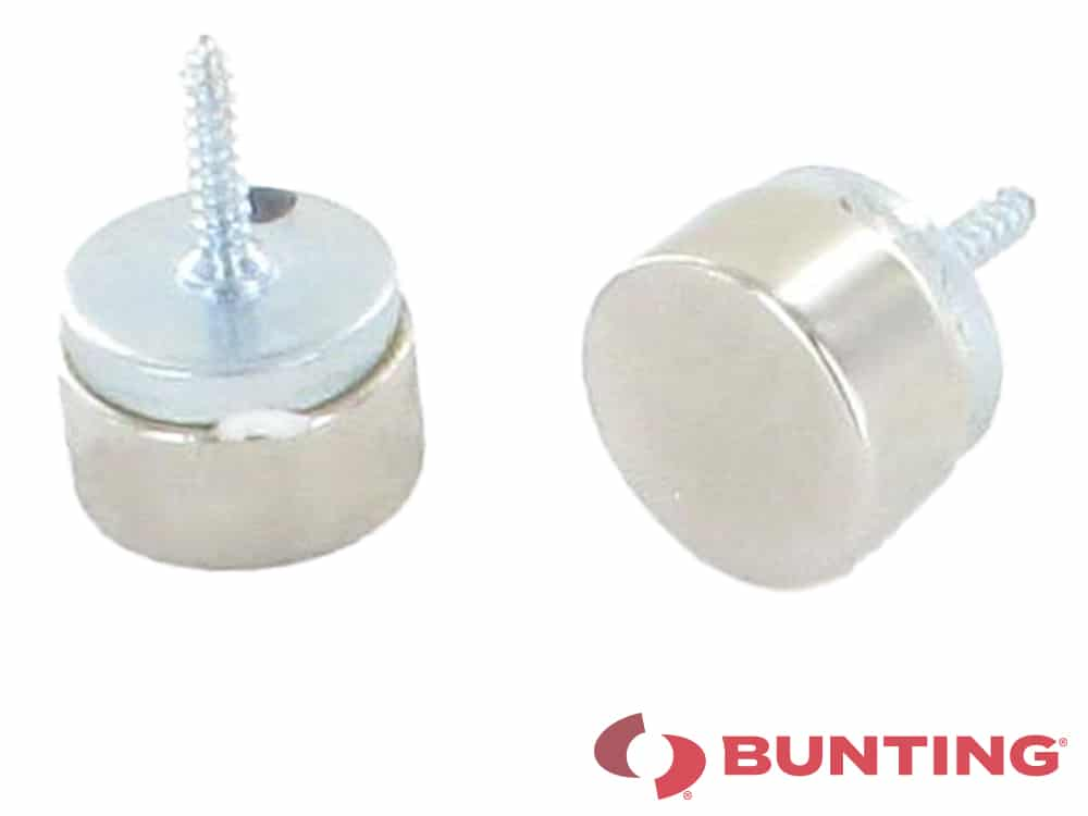 Magnetic screw